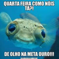 QUARTA FEIRA COMO NÓIS TÁ?!DE OLHO NA META OURO!!!