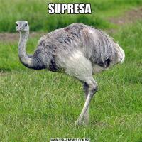 SUPRESA