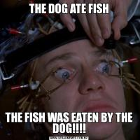 THE DOG ATE FISHTHE FISH WAS EATEN BY THE DOG!!!!