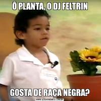 Ô PLANTA, O DJ FELTRINGOSTA DE RAÇA NEGRA?