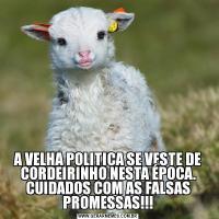 A VELHA POLITICA SE VESTE DE CORDEIRINHO NESTA ÉPOCA. CUIDADOS COM AS FALSAS PROMESSAS!!!