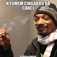 Ñ FUMEM CINGARRO DA CANCI