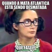 QUANDO A MATA ATLANTICA ESTÁ SENDO DESMATADAQUE FASE !!