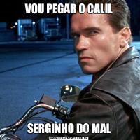 VOU PEGAR O CALILSERGINHO DO MAL
