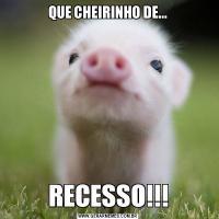 QUE CHEIRINHO DE...RECESSO!!!