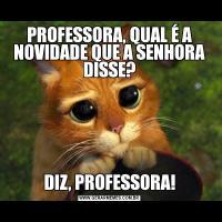PROFESSORA, QUAL É A NOVIDADE QUE A SENHORA DISSE?DIZ, PROFESSORA!
