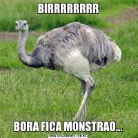 BIRRRRRRRRBORA FICA MONSTRAO...