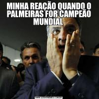 MINHA REAÇÃO QUANDO O PALMEIRAS FOR CAMPEÃO MUNDIAL