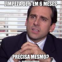 LIMPEZA DE 6 EM 6 MESESPRECISA MESMO?