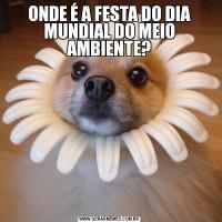 ONDE É A FESTA DO DIA MUNDIAL DO MEIO AMBIENTE?