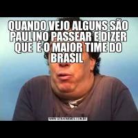 QUANDO VEJO ALGUNS SÃO PAULINO PASSEAR E DIZER QUE  É O MAIOR TIME DO BRASIL