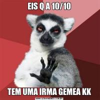 EIS Q A 10/10TEM UMA IRMA GEMEA KK