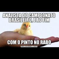 ANALISTA DO CAMPEONATO BRASILEIRO, E AO FIMCOM O PINTO NO RABO