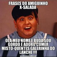 FRASES DO AMIGUINHO X-SALADAOLÁ MEU NOME É BUDA SOU GORDO E ADORO COMER MISTO-QUENTES GALERINHA DO LANCHE !!!