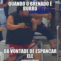 QUANDO O BRENADO É BURRODA VONTADE DE ESPANCAR ELE