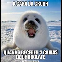 A CARA DA CRUSHQUANDO RECEBER 5 CAIXAS DE CHOCOLATE