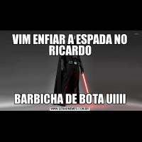 VIM ENFIAR A ESPADA NO RICARDOBARBICHA DE BOTA UIIII