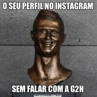 O SEU PERFIL NO INSTAGRAMSEM FALAR COM A G2N
