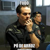 TUDO PÓ DE ARROZ
