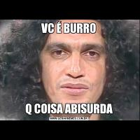 VC É BURROQ COISA ABISURDA