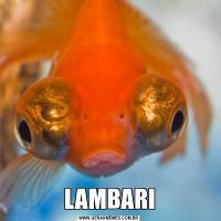LAMBARI