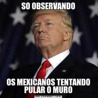 SO OBSERVANDOOS MEXICANOS TENTANDO PULAR O MURO
