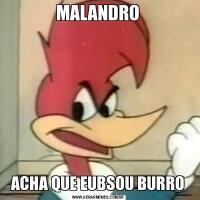 MALANDROACHA QUE EUBSOU BURRO