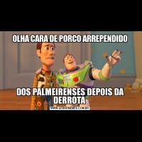 OLHA CARA DE PORCO ARREPENDIDODOS PALMEIRENSES DEPOIS DA DERROTA