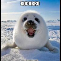 SOCORRO