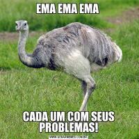 EMA EMA EMA CADA UM COM SEUS PROBLEMAS!