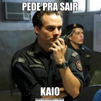 PEDE PRA SAIRKAIO