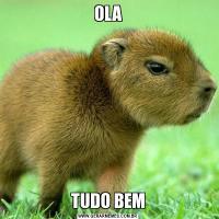 OLATUDO BEM