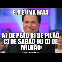 ELA É UMA GATAA) DE PEÃO B) DE PILÃO C) DE SABÃO OU D) DE MILHÃO