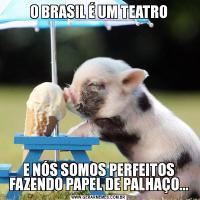 O BRASIL É UM TEATROE NÓS SOMOS PERFEITOS FAZENDO PAPEL DE PALHAÇO...
