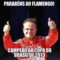 PARABÉNS AO FLAMENGO! CAMPEÃO DA COPA DO BRASIL DE 2013