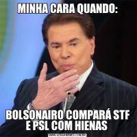 MINHA CARA QUANDO:BOLSONAIRO COMPARÁ STF E PSL COM HIENAS