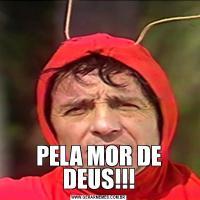 PELA MOR DE DEUS!!!