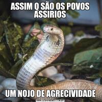 ASSIM Q SÃO OS POVOS ASSIRIOSUM NOJO DE AGRECIVIDADE