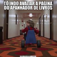 TÔ INDO AVALIAR A PÁGINA DO APANHADOR DE LIVROS