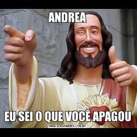 ANDREAEU SEI O QUE VOCÊ APAGOU