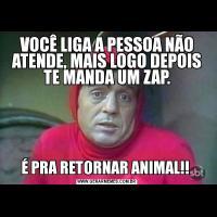 VOCÊ LIGA A PESSOA NÃO ATENDE, MAIS LOGO DEPOIS TE MANDA UM ZAP.É PRA RETORNAR ANIMAL!!