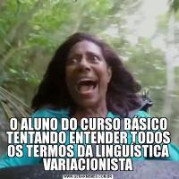 O ALUNO DO CURSO BÁSICO TENTANDO ENTENDER TODOS OS TERMOS DA LINGUÍSTICA VARIACIONISTA