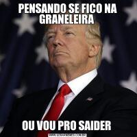 PENSANDO SE FICO NA GRANELEIRA OU VOU PRO SAIDER