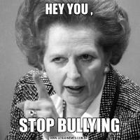 HEY YOU ,STOP BULLYING