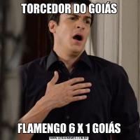 TORCEDOR DO GOIÁSFLAMENGO 6 X 1 GOIÁS