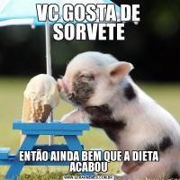 VC GOSTA DE SORVETEENTÃO AINDA BEM QUE A DIETA ACABOU