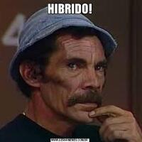 HIBRIDO!