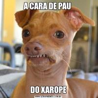 A CARA DE PAU DO XAROPE