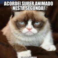 ACORDEI SUPER ANIMADO NESTA SEGUNDA!