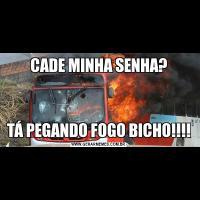 CADE MINHA SENHA?TÁ PEGANDO FOGO BICHO!!!!